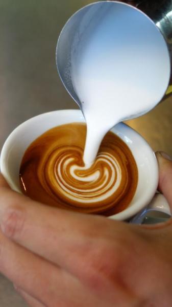 CAFE - NORTH SYDNEY - JM0584